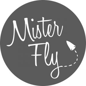 Mister Fly